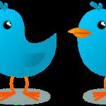 Cómo utilizar Twitter Ads para lograr objetivos