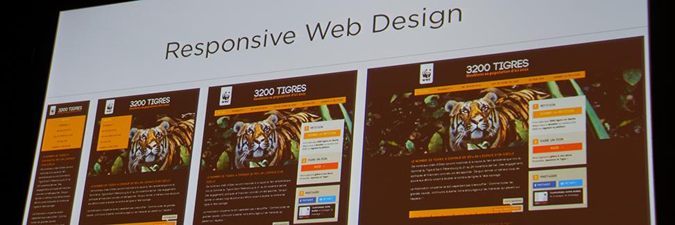 web_responsive