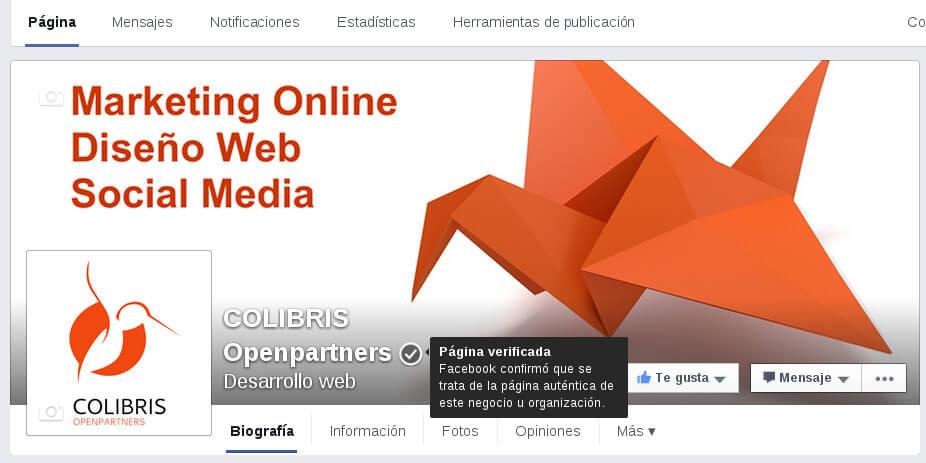 Cómo verificar la página de Facebook Ejemplo 3