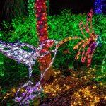 COLIBRIS Openpartners os desea una Feliz Navidad